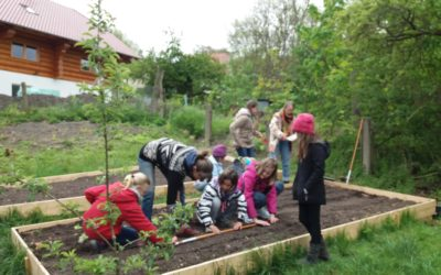 Pflanzung im Schulgarten